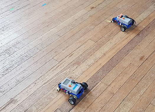 LEGO races